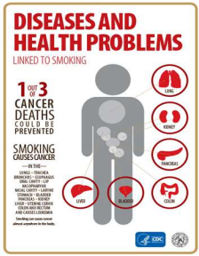 Photo of Disease and health problems