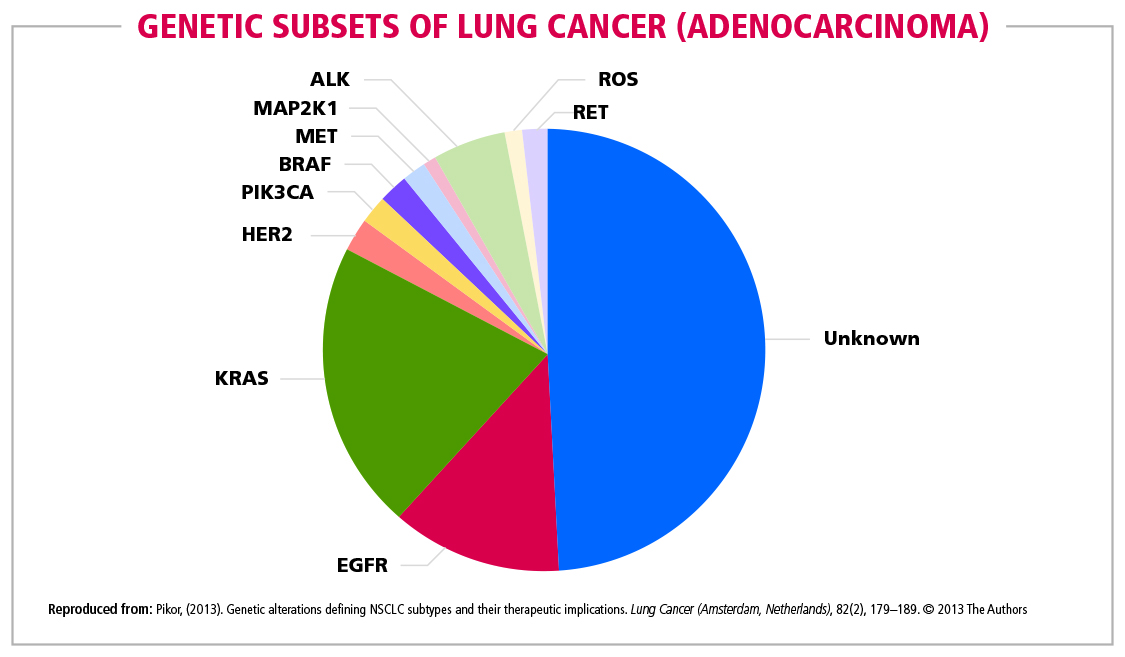 Fig 11 Genetic Subsets of Lung  Cancer (Adenocarcinoma)