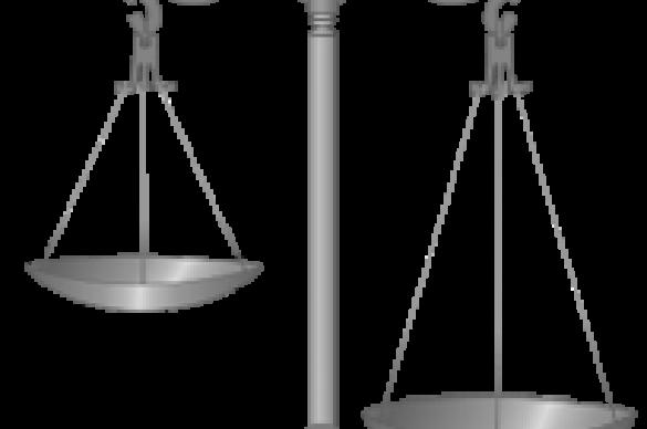 Judicial scale